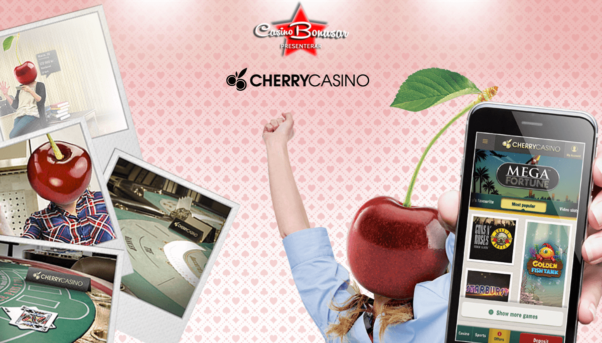 Cherry Casino_CasinoBonusar