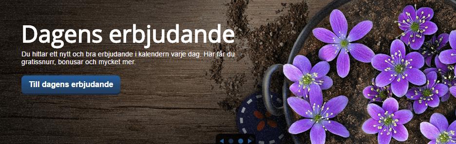 Folkeautomaten är det norska nätcasinot som tagit den svenska marknaden med storm med sina unika kampanjer och free spins.