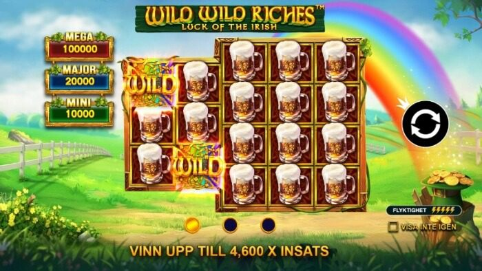 wild wild riches spelfunktioner